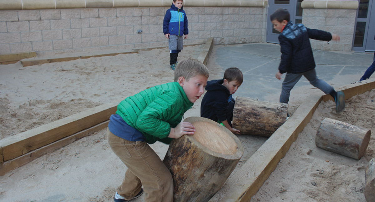 Sandbox -rolling in logs
