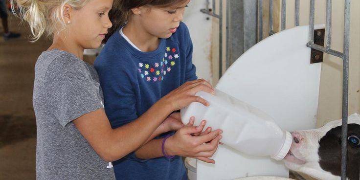3rd Grade -Dairy Farm -bottle
