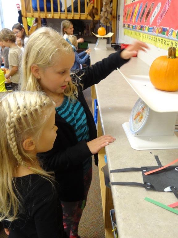 3rd Grade -Kindergarten buddies -weighing pumpkin