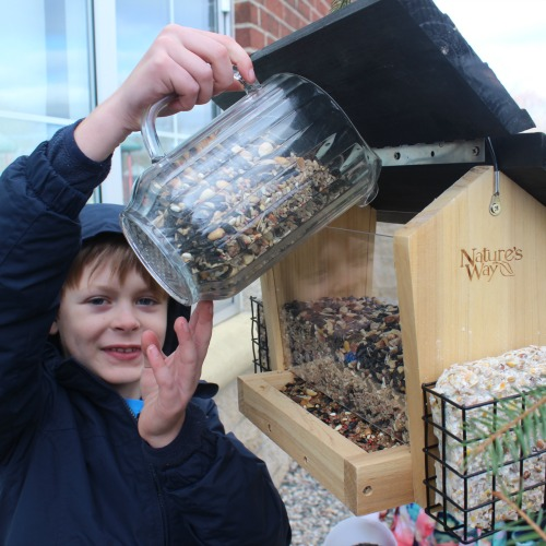 Boy Pouring Bird Seed