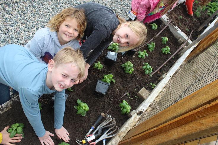 Herb Garden 1B