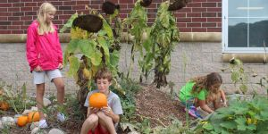 elementary -garden -outdoor