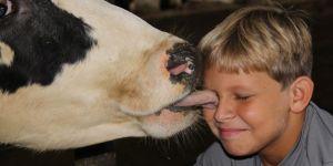 3rd grade -field trip -dairy