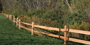 Rail fence by wetlands area
