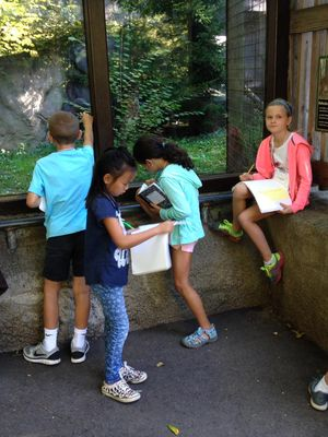 4th grade: school at the zoo