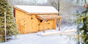 WoodShED Winter