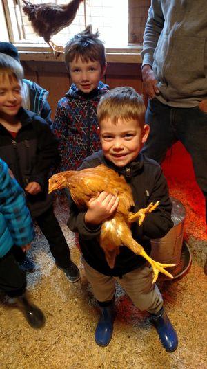 Hugging the chicken