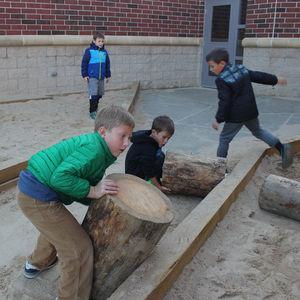 Sandbox Log Move