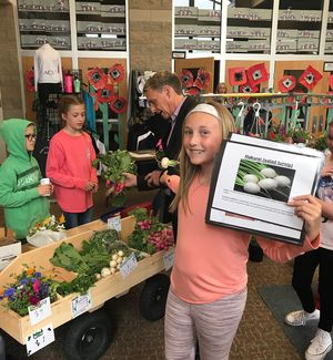 Enlarge image Turnip Sale 4th Grade