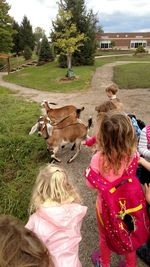 Preschool Goats